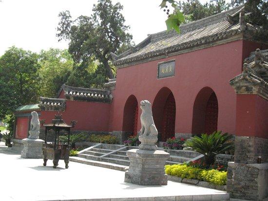 Dingyuan Warship Tourist Area Photo