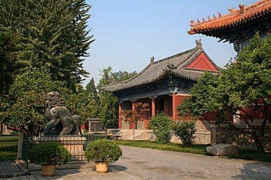 Lufeng Photo