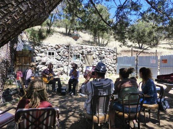 Little Toad Creek Inn & Tavern: Back Yard Music