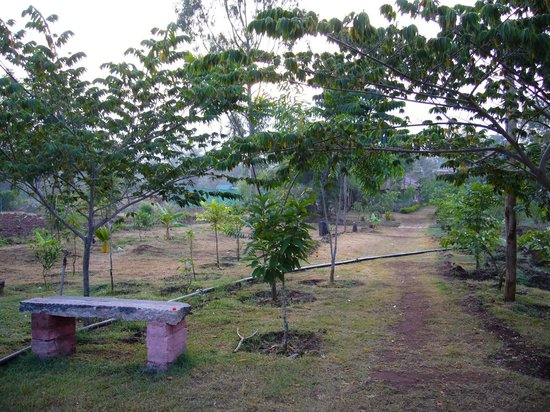 Coorg Jungle Kids Boutique Resort: Mud track in the property