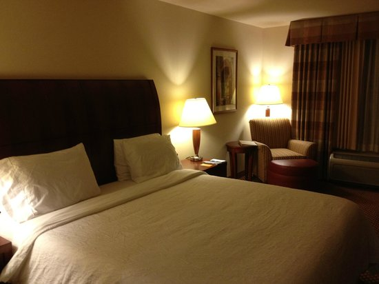 Hilton Garden Inn Austin North: Room