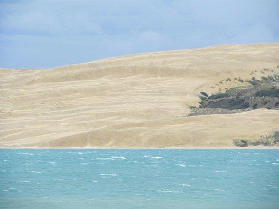 Waiotemarama Falls Lodge : Sand Hills