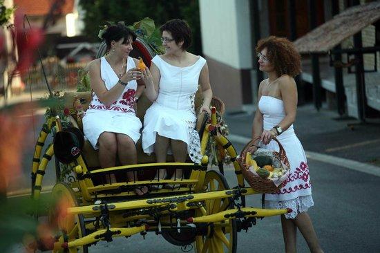 Hotel Garten: Carriage