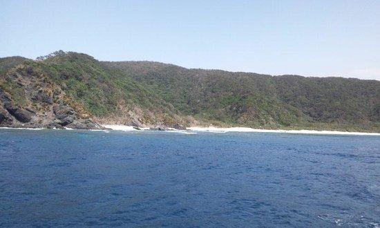 Kerama Islands: 船の上から