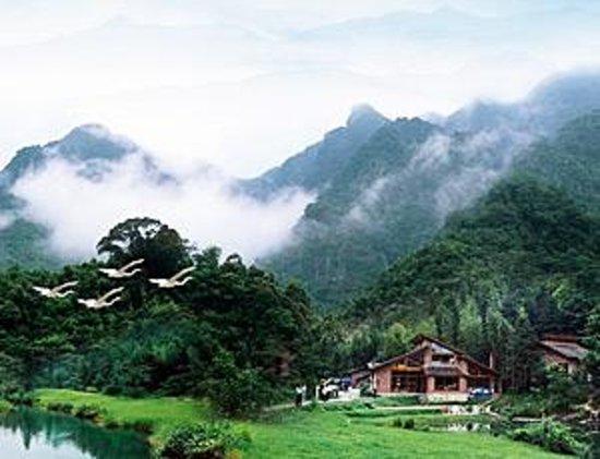 Yongji Ecological Park Foto