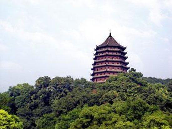 Stork Hill of Hangzhou Foto