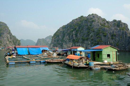 Red Island Fishing Village