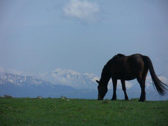 Monti Sibillini: Panorama sui Monti della Laga
