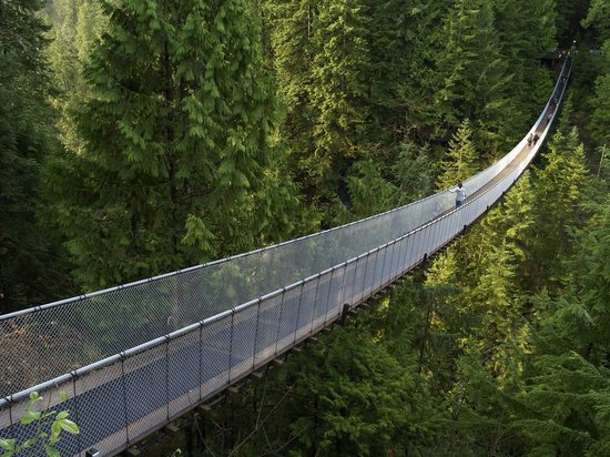 Capilano Suspension Bridge und Park: Capilano bridge