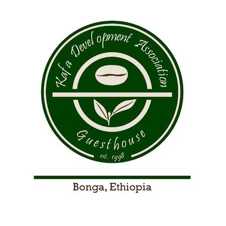 Bonga照片