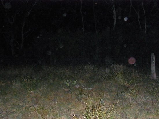 Blue Mountains Mystery Tours: Red orb in the Cemetery, can indicate dark energy