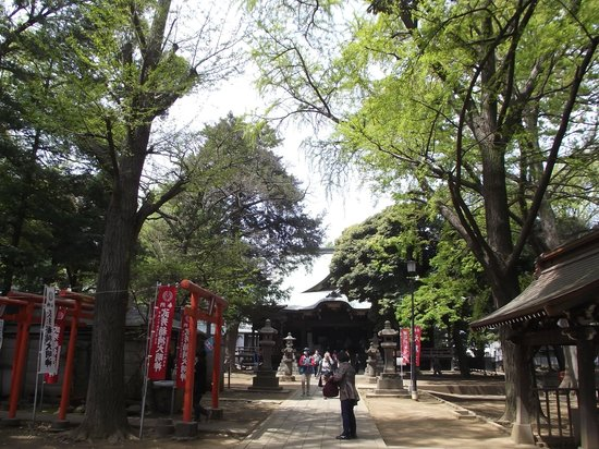 大イチョウ前付近からの雑司ヶ谷鬼子母神堂 - Picture of Kishimojindo, Toshima - TripAdvisor