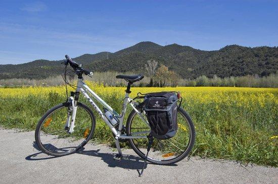 CicloTurisme: Greenways