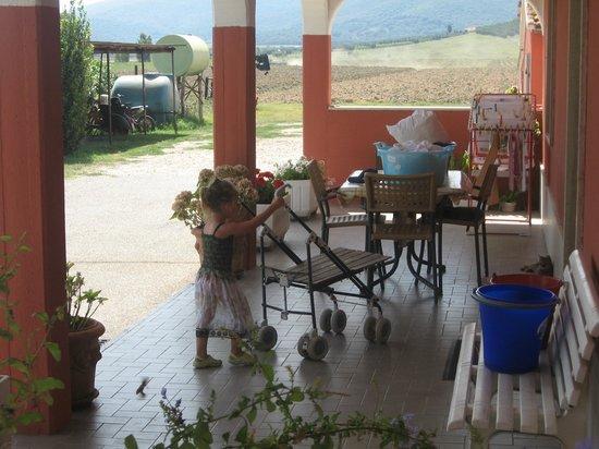 Agriturismo San Gabriele: passatempo