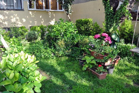 Sultanahmet Park Hotel: Hotel Garden