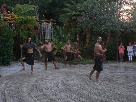 Tamaki Maori Village: Entrance show