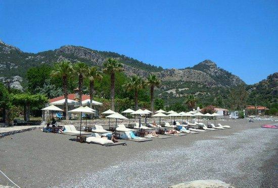 Dionysos Hotel: Beach Club
