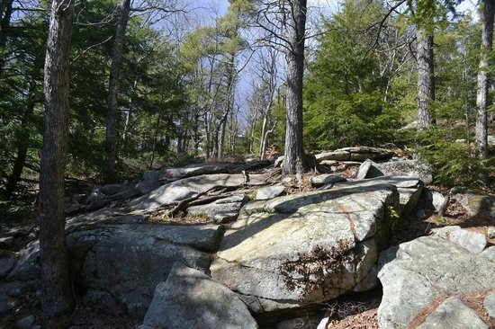 Mount Agamenticus : this was the most challenging section for about 50 feet
