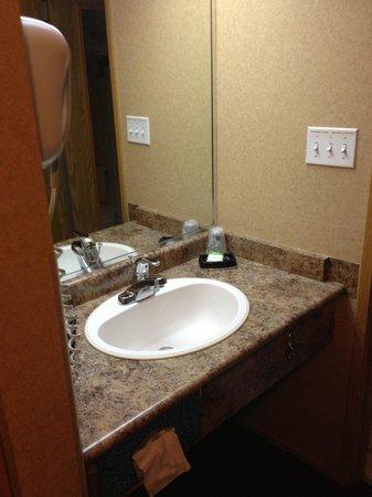 Best Western Plus Country Meadows Inn: Bathroom