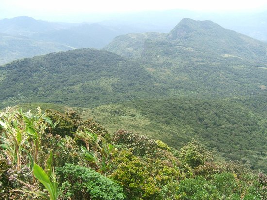 Knuckles Mountain Range Matale All You Need To Know