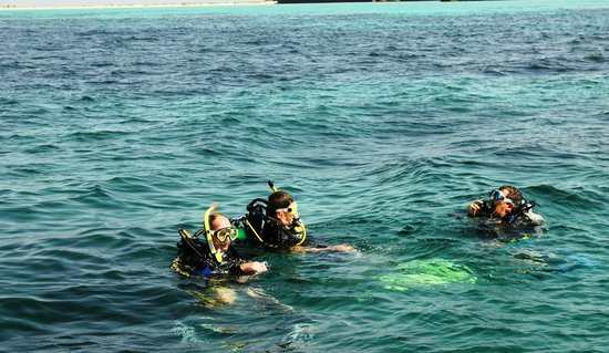 Farasan Islands: Diving off Farasan Island