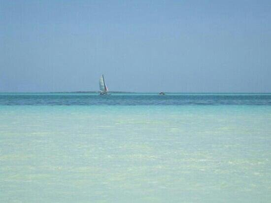 Melia Cayo Guillermo : loved the sea