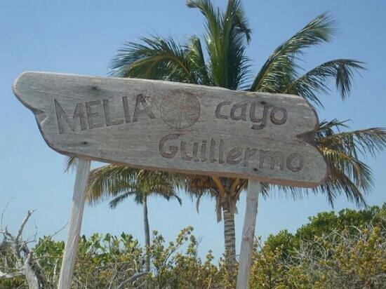 Melia Cayo Guillermo: melia