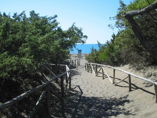 Camping Il Gineprino: Spiaggia Il Gineprino