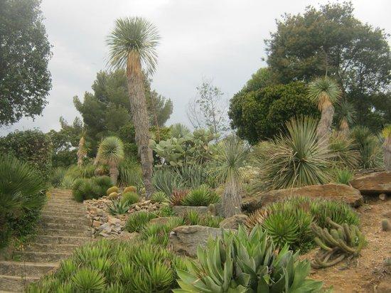 Jardin m diterran en photo de domaine du rayol rayol for Jardin rayol canadel