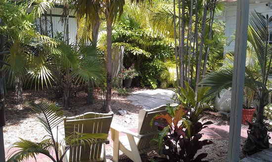 Merlin Guest House Key West: View from our porch
