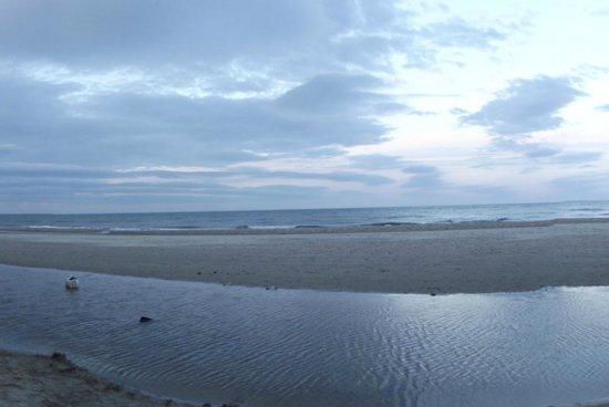 Brittas Bay : On the beach