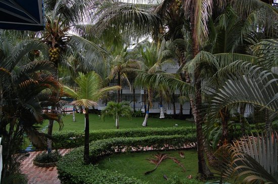 Decameron Marazul: Jardines