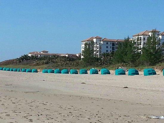 SeaSpray Inn Beach Resort: The beach at the hotel looking south