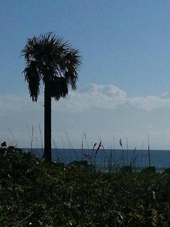 SeaSpray Inn Beach Resort : Walk through the dunes to the beach