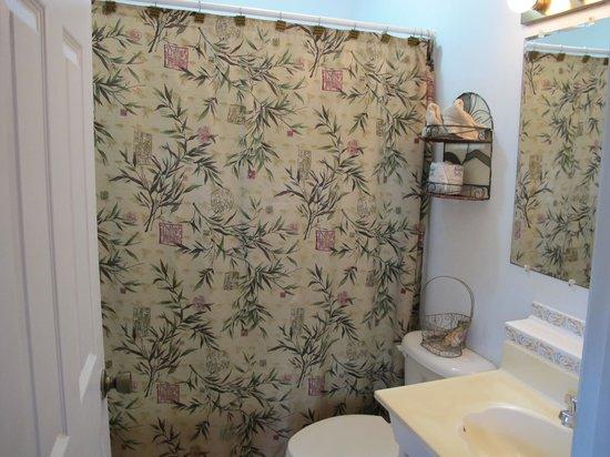 Pam's Pelican Bed & Breakfast : Zen bathroom