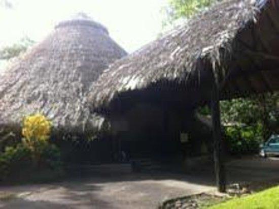 Sarapiquis Rainforest Lodge照片