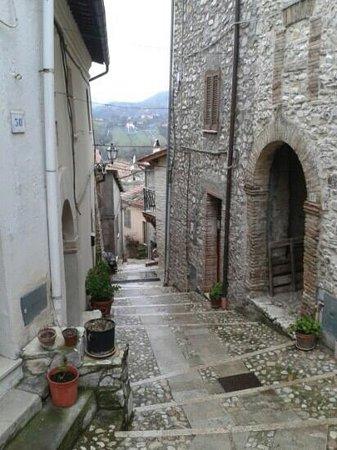 Sabine Hills: montenero