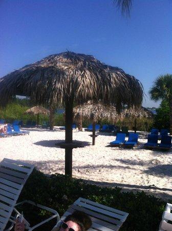 Bahama Bay Resort Orlando by Wyndham Vacation Rentals: Beach Area