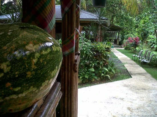 Rodney's Wellness Retreat: Pathway from Mayan bar to reception and Kanawa restaurant.
