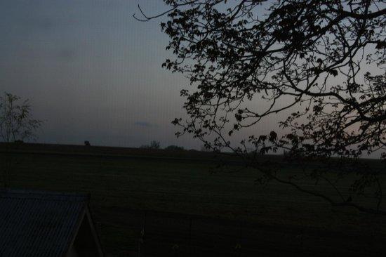 写真Verdant View Farm Bed and Breakfast枚