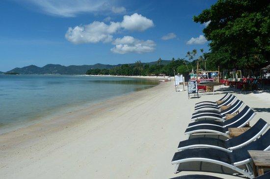 Tango Beach Resort: Beach to the right of Tango