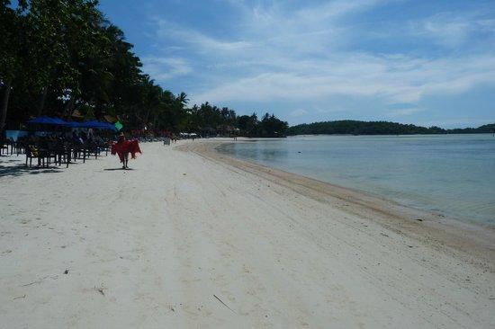 Tango Beach Resort: Beach to the left of Tango