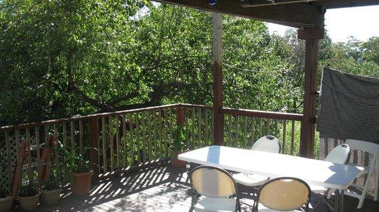 Herbivorian House: Blossom porch