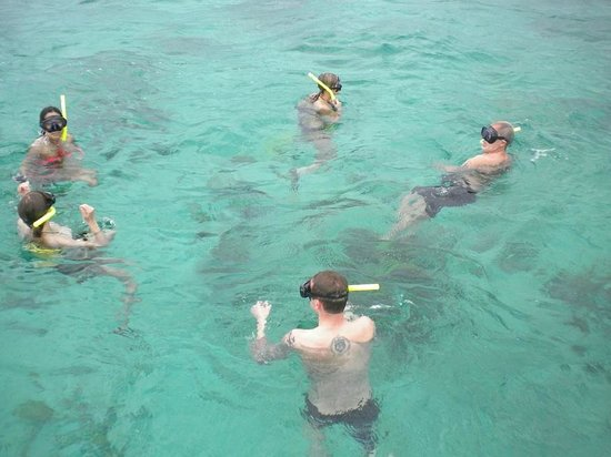 Memories Flamenco Beach Resort Snorkeling