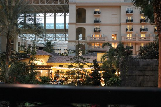 Gaylord Palms Resort & Convention Center: restaurant in background