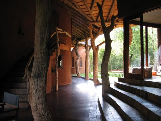 Madikwe Safari Lodge: View from ding area towards bathroom