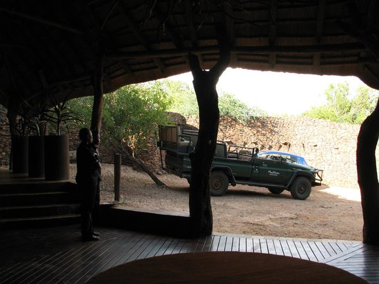 Madikwe Safari Lodge: Game drive vehicle