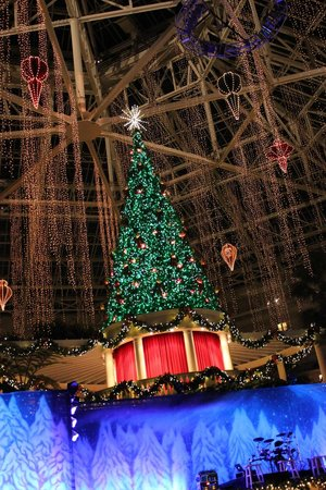 Gaylord Palms Resort & Convention Center: lit tree
