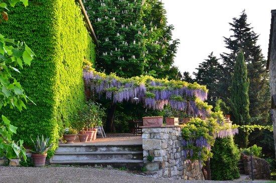 Agriturismo Cercina Vecchia : La casa