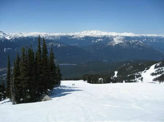 Summit Lodge Boutique Hotel: Almost Private Snow Slope.